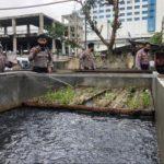 Kapolresta Balikpapan & PJU Tinjau Langsung Lahan Penguatan Ketahanan Pangan Ditengah Pandemi Covid-19